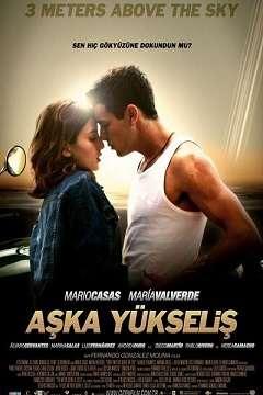Aşka Yükseliş - 2010 Türkçe Dublaj MKV indir