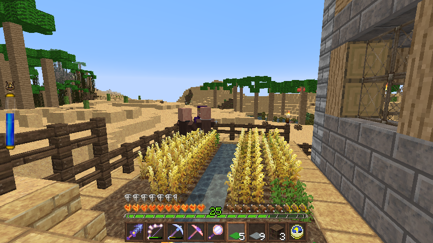 how to make villagers follow you
