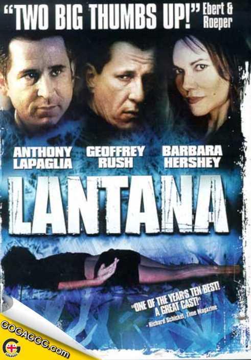 Lantana | ლანტანა (ქართულად)