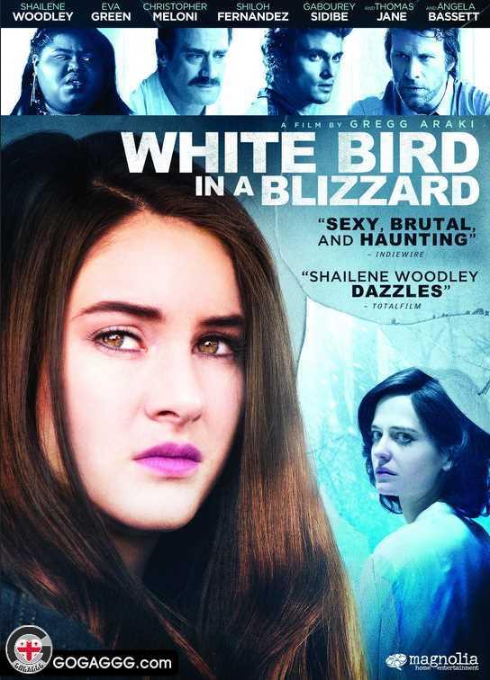 თეთრი ჩიტი ქარბუქში | White Bird in a Blizzard  (ქართულად)