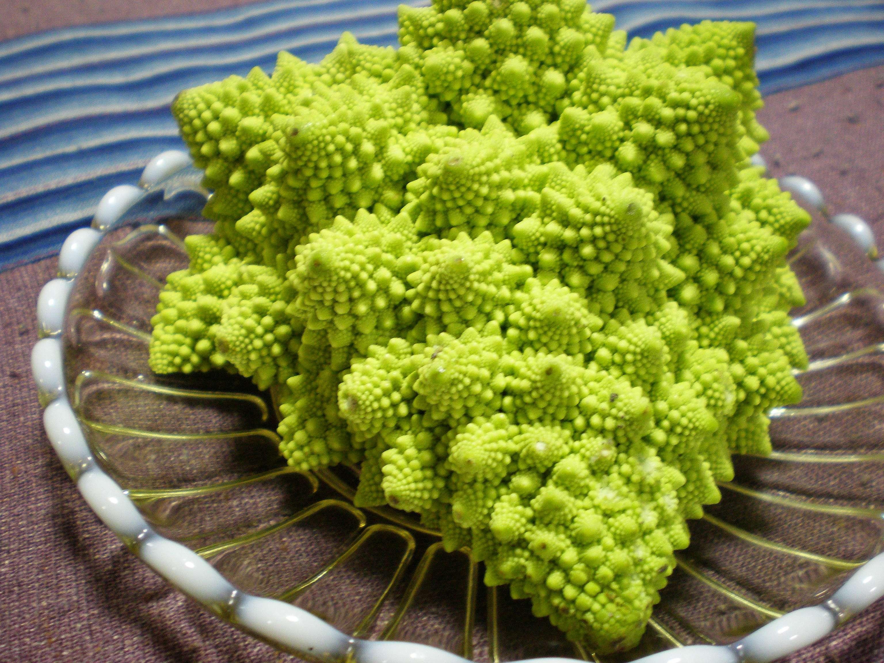 Broccolo romanesco ottobrino 100 semi a pigna precoce for I semi della pigna