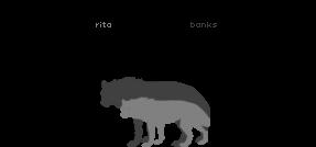 Banks and Rita