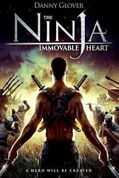 Ninjanın Kalbi - 2014 Türkçe Dublaj BRRip indir
