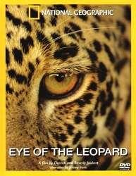 Mắt Loài Báo