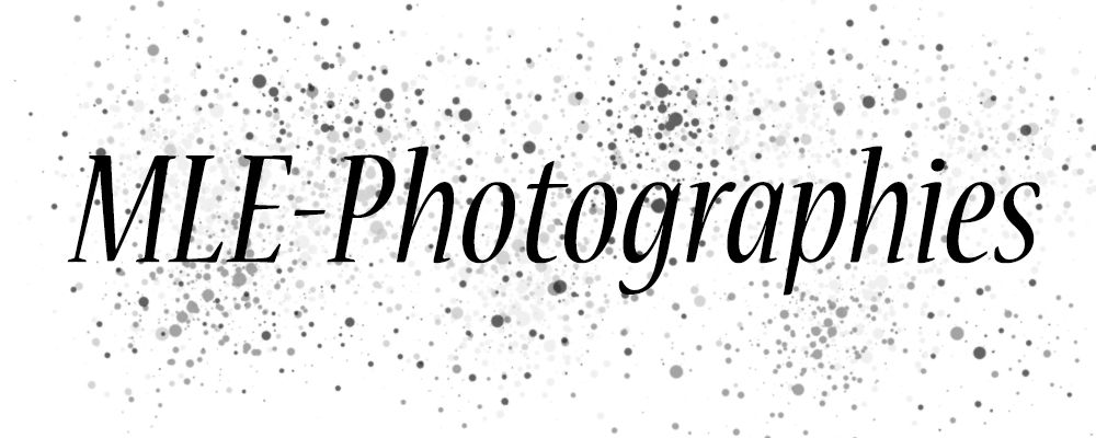 Mle Photographies