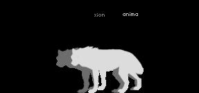Zitao, Xion, and Anima