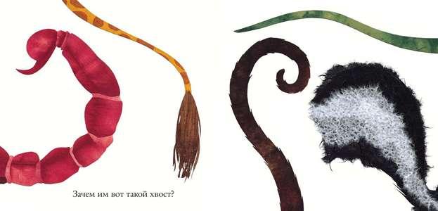 Хвосты всех животных в рисунках