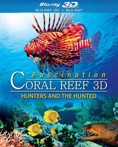 Fascination Coral Reef Hunters and The Hunted (2012) MKV 3D Half SBS DTS ITA ENG + AC3 Sub - DDN