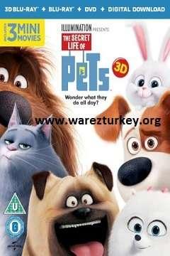 Evcil Hayvanların Gizli Yaşamı - 2016 3D BluRay m1080p Half-SBS Türkçe Dublaj MKV indir