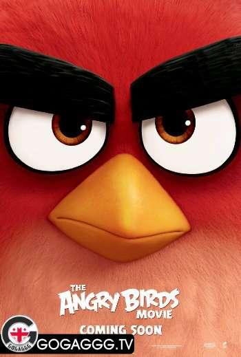 Angry Birds / ბრაზიანი ჩიტები (2016)