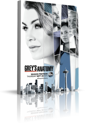 Grey's Anatomy - Stagione 14 (2017) [9/24] .mkv WEBMux ITA ENG