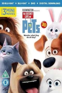 Evcil Hayvanların Gizli Yaşamı - 2016 3D BluRay m1080p H-SBS Türkçe Dublaj MKV indir