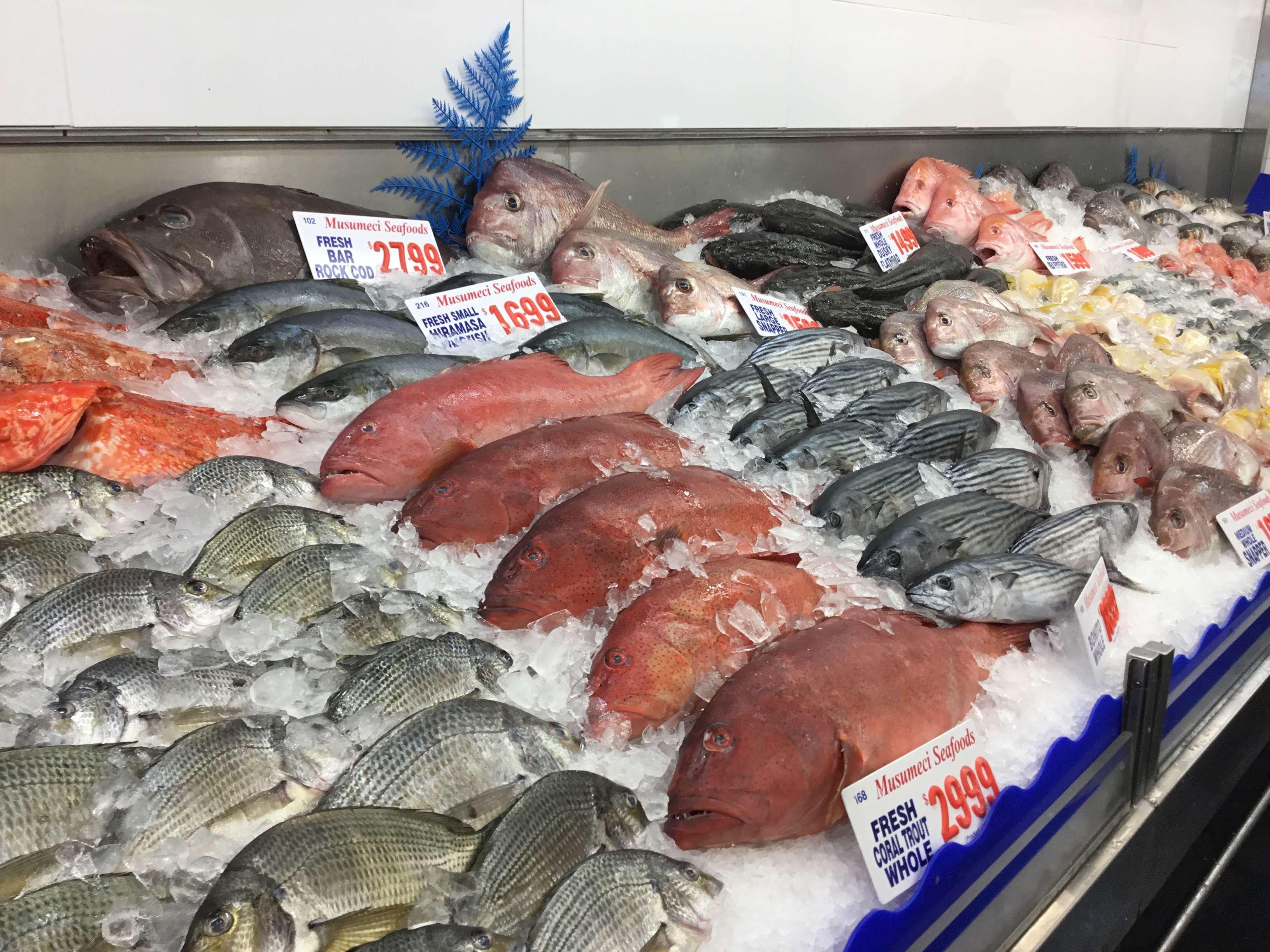 Solo Trip 11日 澳洲 悉尼墨爾本 Part 8 Sydney the fish market 同唔知乜嘢博物館