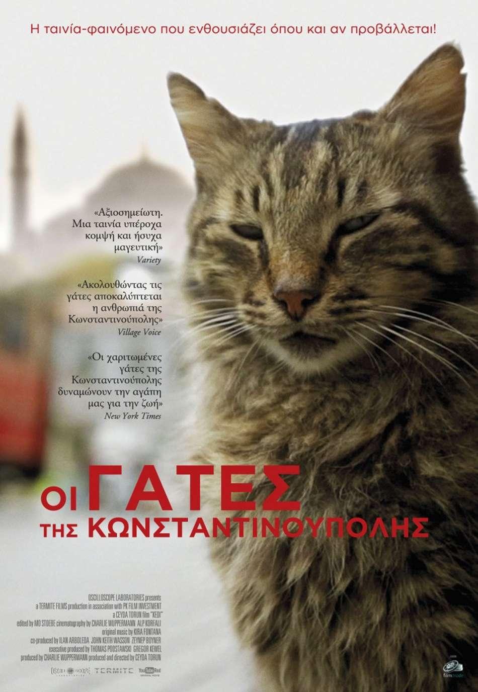 Οι Γάτες της Κωνσταντινούπολης (Kedi) Poster Πόστερ
