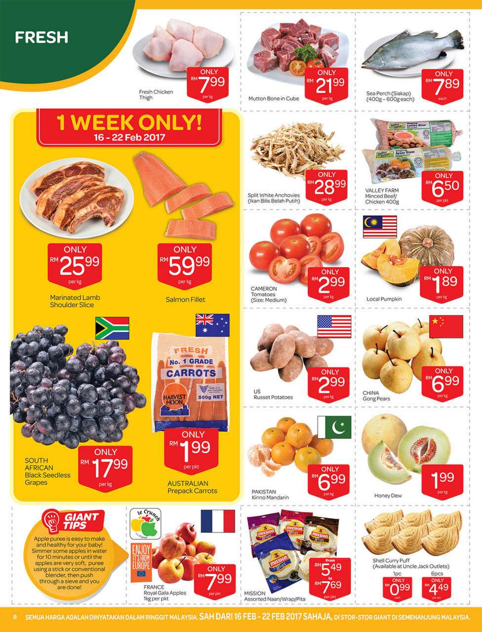 Giant Catalogue (16 February 2017 - 1 March 2017)