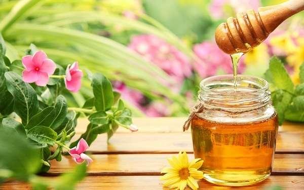 Chia sẻ cách chữa thâm môi bằng mật ong tại nhà