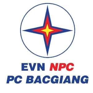 Công ty điện lực Bắc Giang