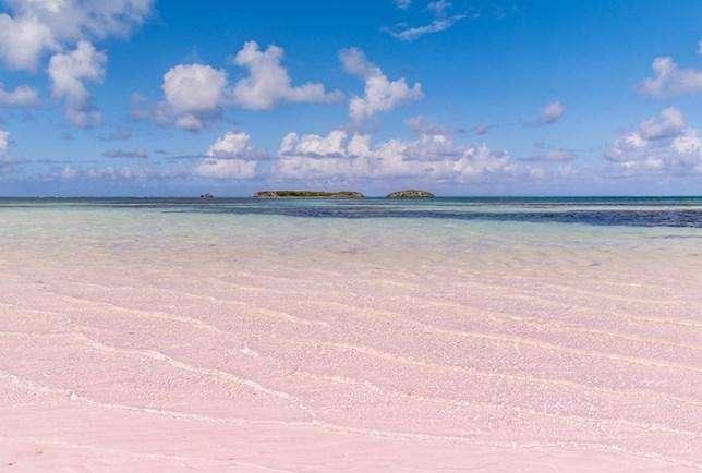 Playa pink sands
