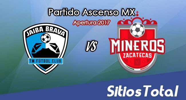 Ver Tampico Madero vs Mineros de Zacatecas en Vivo – Online, Por TV, Radio en Linea, MxM – Apertura 2017 Ascenso MX