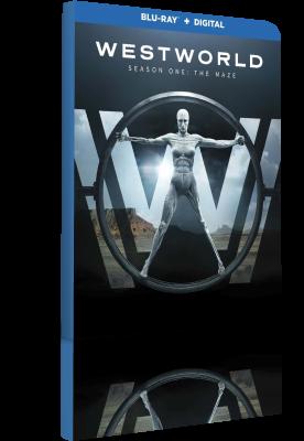 Westworld - Stagione 1 (2017) .mkv BDMux 1080p & 720p DD5.1 ITA ENG Subs