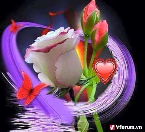 http://imageshack.com/a/img923/3006/fIuger.jpg