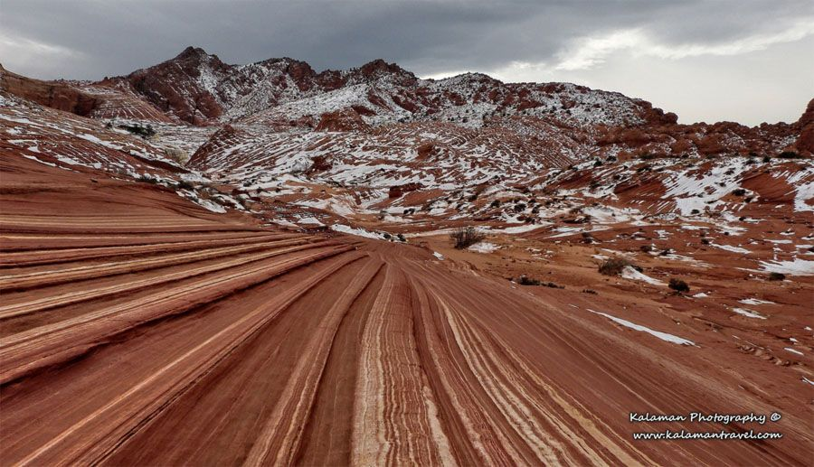 COYOTE BUTTES WAVE