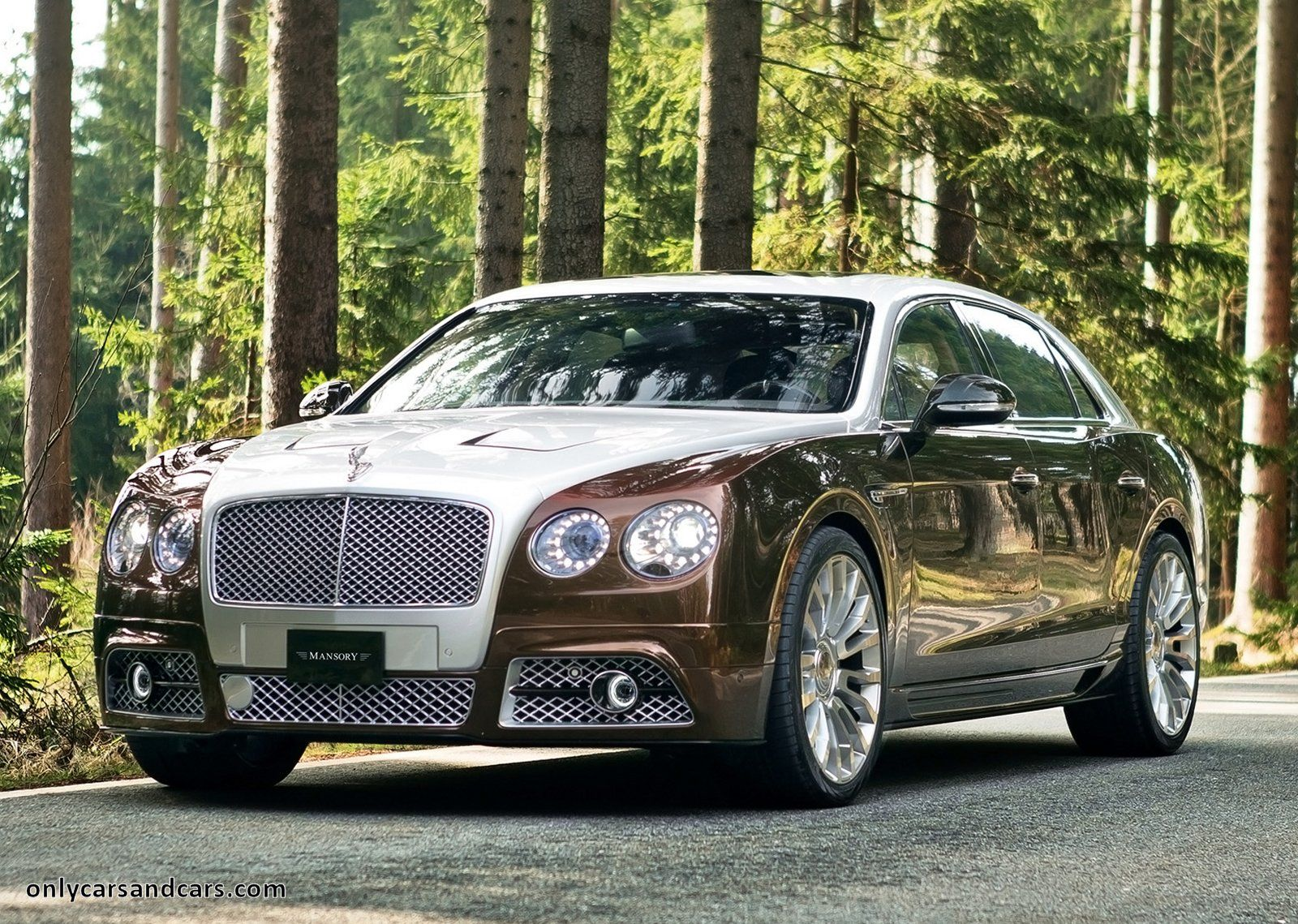 Bentley only cars and cars bentley continental flying spur by mansory publicscrutiny Choice Image