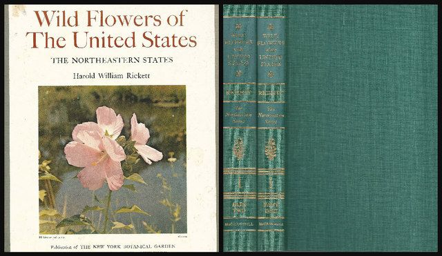WILD FLOWERS OF THE UNITED STATES: THE NORTHEASTERN STATES - VOLUME ONE, PART ONE and PART TWO - Two Volume Set, Rickett, Harold William
