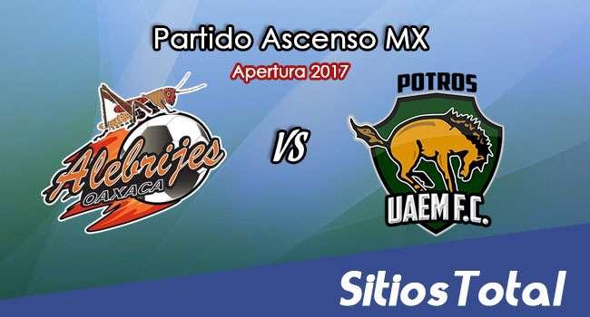 Alebrijes de Oaxaca vs Potros UAEM en Vivo – Online, Por TV, Radio en Linea, MxM – Apertura 2017 – Ascenso MX