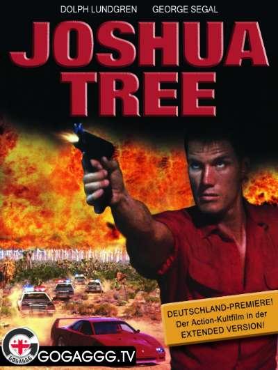 Joshua Tree / ჯოშუას ხე