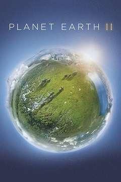 Yeryüzü II - 2016 Türkçe Dublaj BDRip x264 AC3 indir