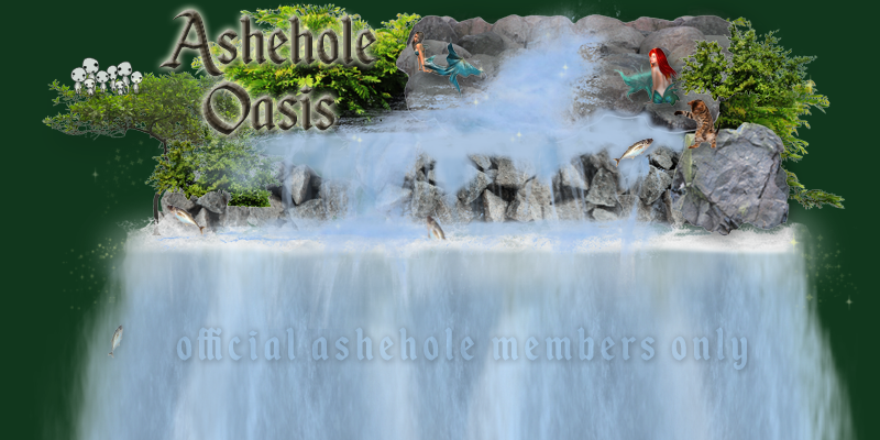 Ashehole Videos