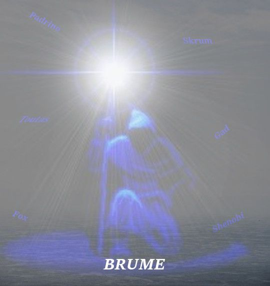 Alliance Brume