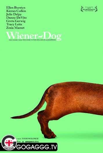 Wiener-Dog / ტაქსა (2016)