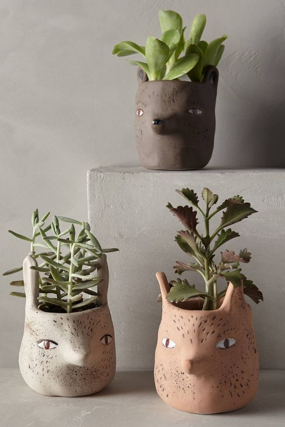 critter pots anthropologie