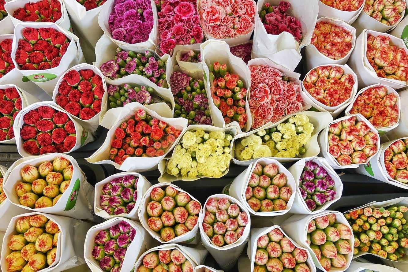 Flower Market Mong Kok, Hong Kong