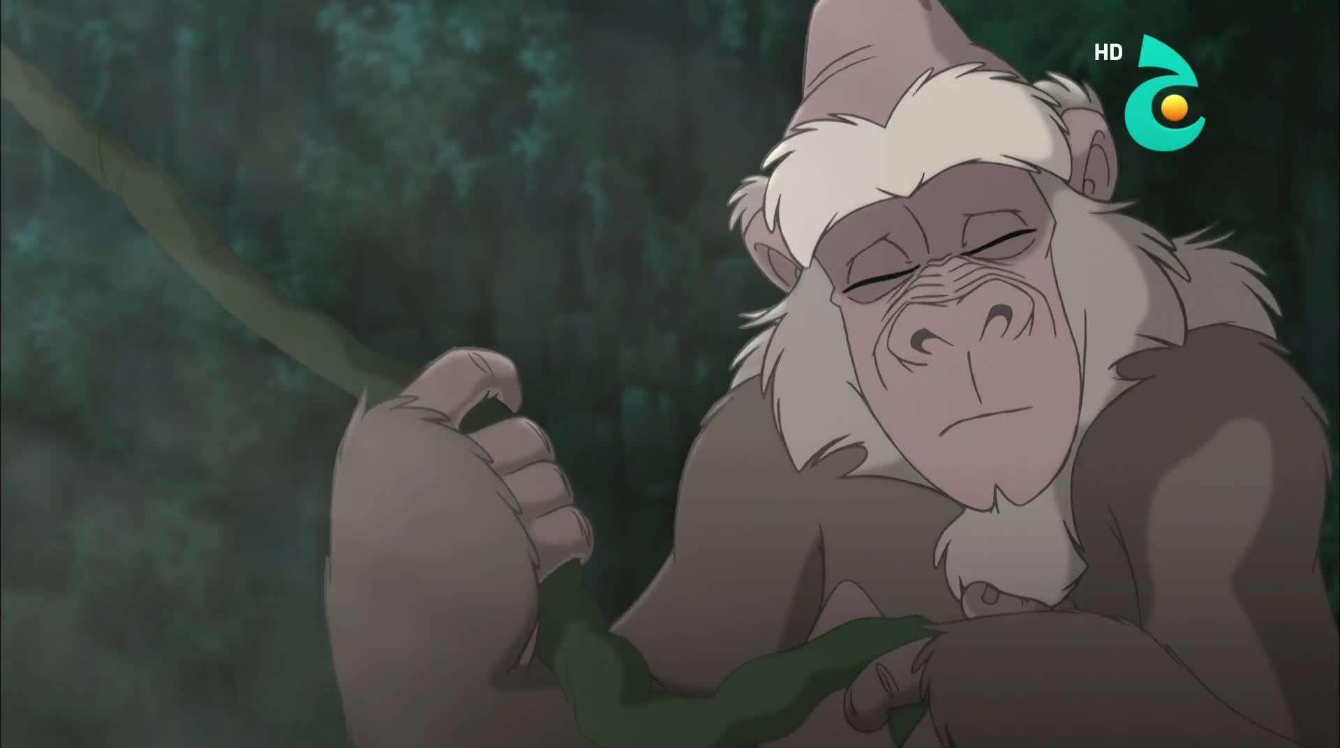 طرزان الجزء الثاني Tarzan II (2005) HDTV 1080p تحميل تورنت 13 arabp2p.com