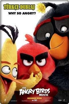 Angry Birds - 2016 Türkçe Dublaj MKV indir