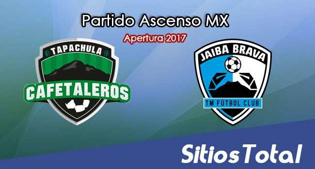 Ver Cafetaleros de Tapachula vs Tampico Madero en Vivo – Online, Por TV, Radio en Linea, MxM – Apertura 2017 Ascenso MX