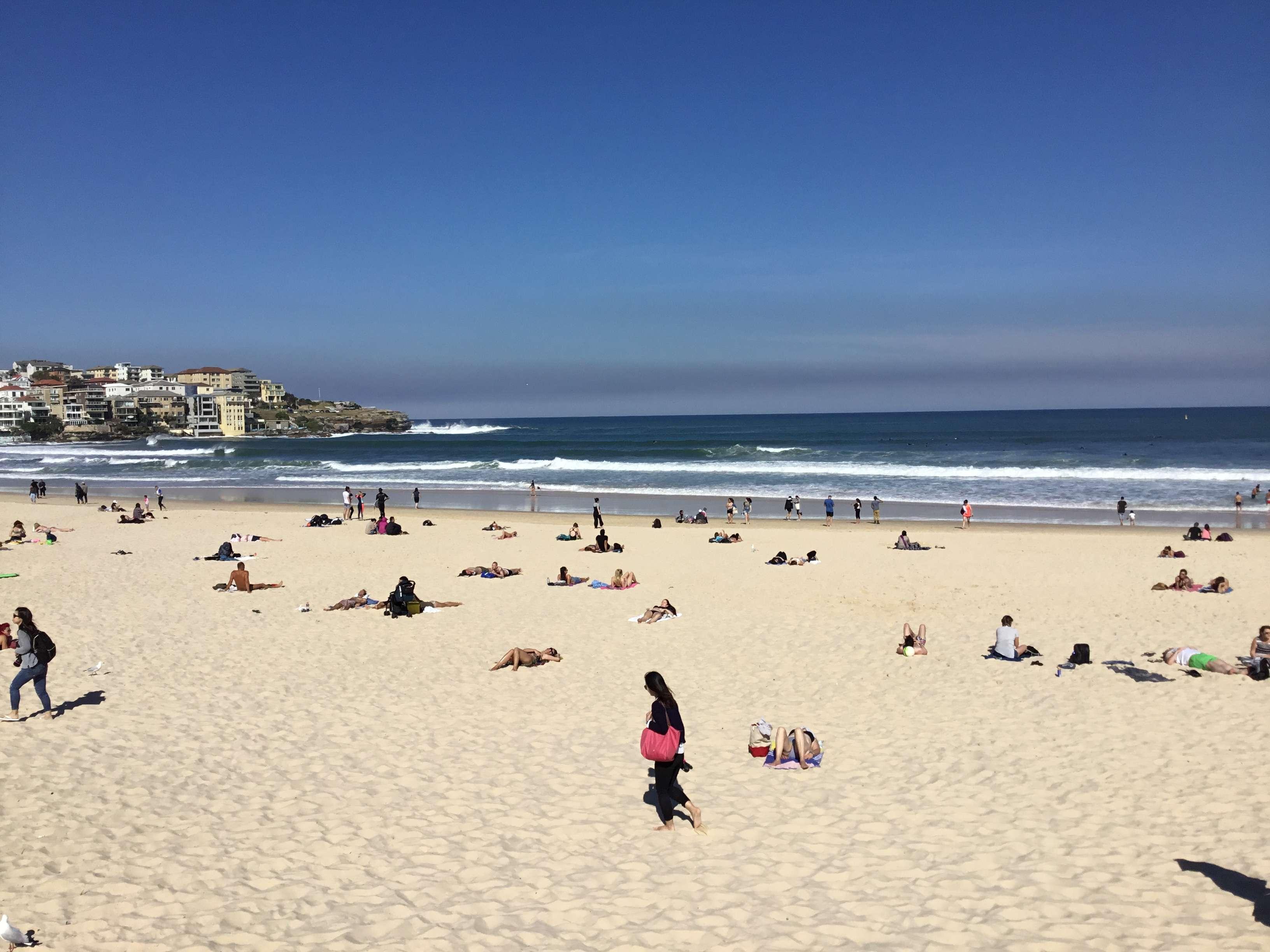 Solo Trip 11日 澳洲 悉尼墨爾本 Part 5 有陽光又大風的bondi beach 加china town