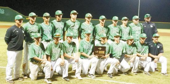Leedey Bison Baseball Headed to State Tournament