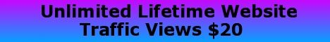 Lifetime Website Traffic $20