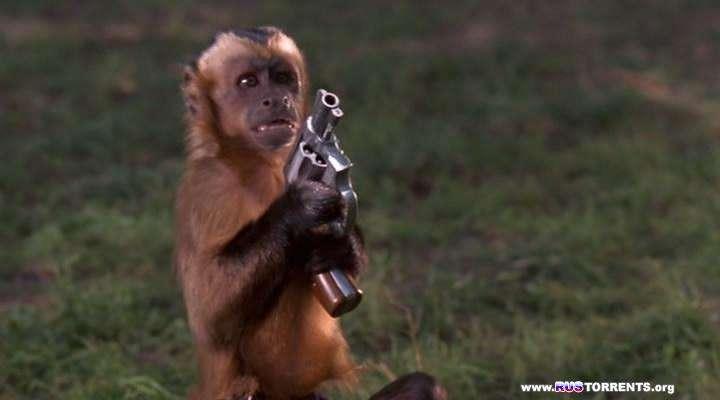 Неприятности с обезьянкой | DVDRip