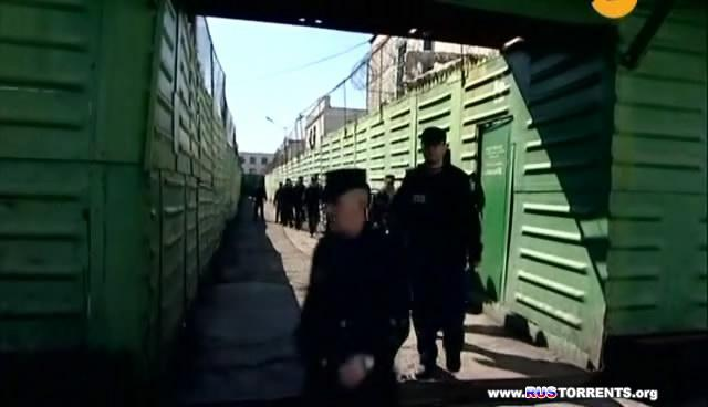 По Законам Зоны | SATRip
