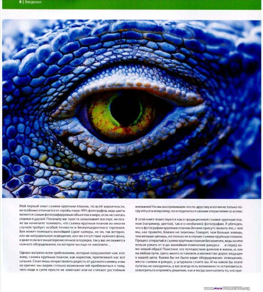 Брайан Петерсон | Как снимать крупным планом. Сила макросъемки | PDF
