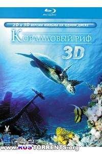 Коралловый риф 3D   BDRip 1080p   3D-Video HOU