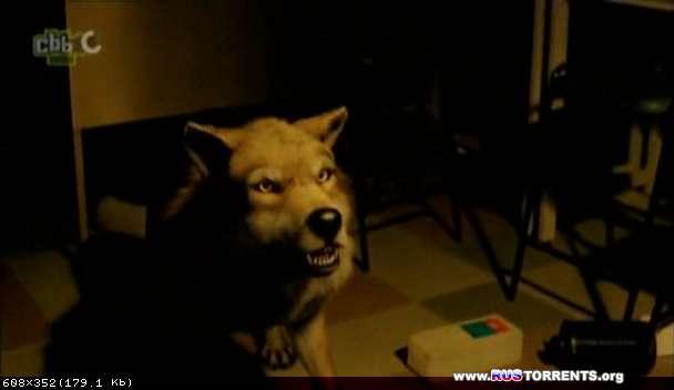 Волчья кровь / Из рода волков [S01] | PDTVRip | DreamRecords
