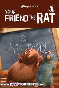 Твой друг крыса