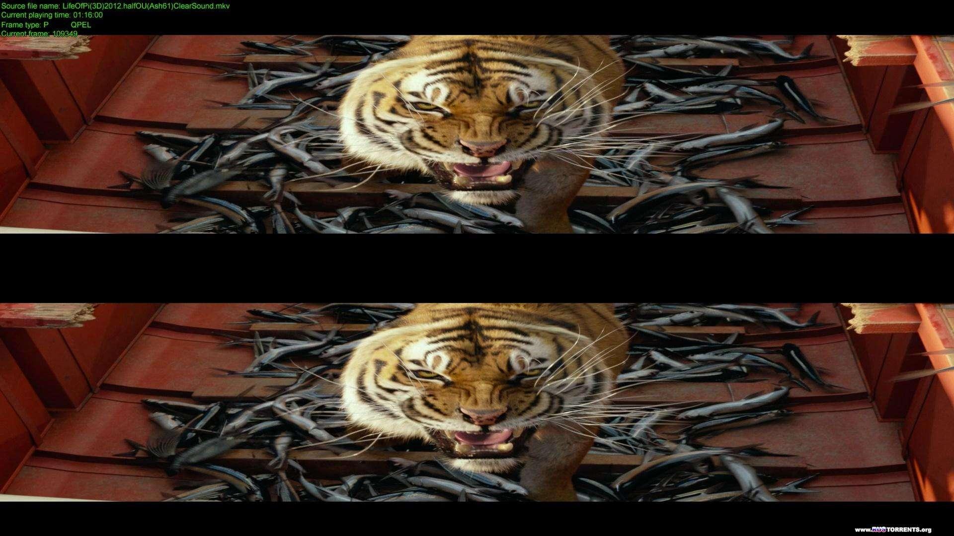 Жизнь Пи | BDRip 1080p | 3D-Video | halfOU