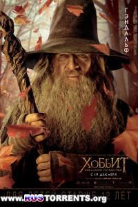 Хоббит: Нежданное путешествие | HDRip | Расширенная версия | iTunes Russia